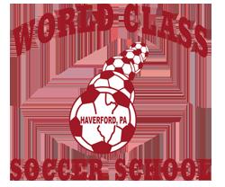 World Class Soccer School Logo